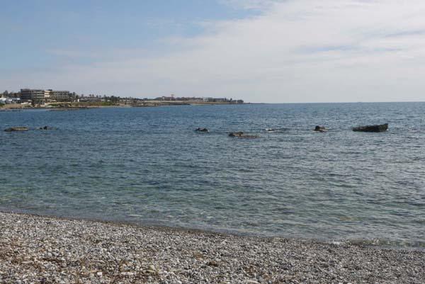 http://humanclub.ru/foto/2012/kypr/2/P1010831.jpg