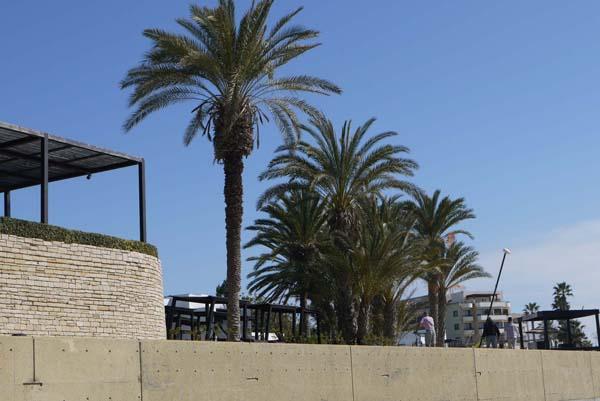 http://humanclub.ru/foto/2012/kypr/2/P1010862.jpg