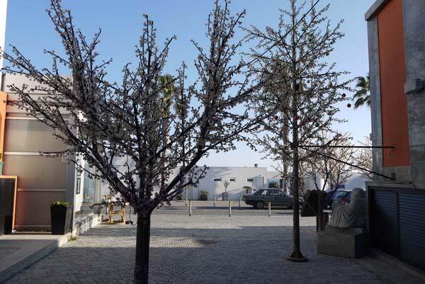 http://humanclub.ru/foto/2012/kypr/2/P1020014.jpg