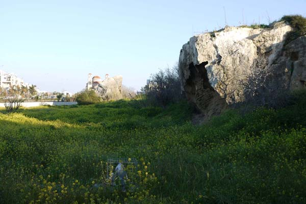 http://humanclub.ru/foto/2012/kypr/2/P1020083.jpg
